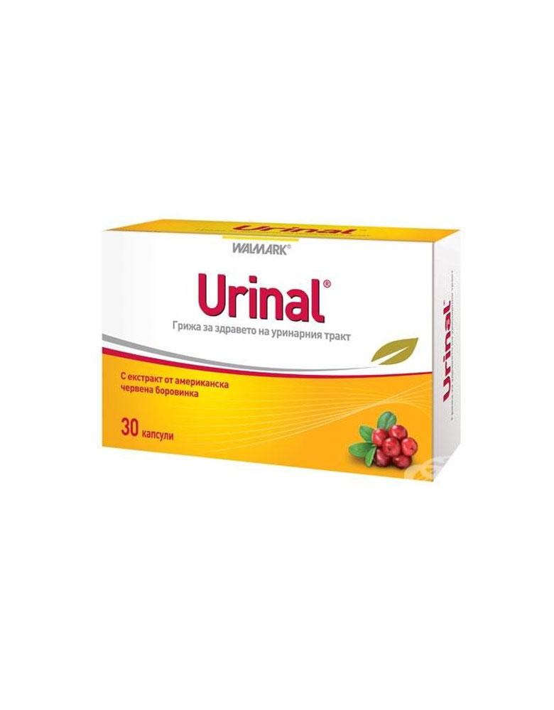 Urinal kapsula